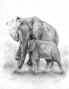 Bev Lewis - Mother Protector - Artists & Illustrators - Original art for sale direct from the artist Elephant Love, Elephant Art, African Elephant, Elephant Tattoo Design, Elephant Tattoos, Realistic Elephant Tattoo, Animal Drawings, Art Drawings, Elephant Drawings