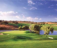 Rancho San Marcos Golf Course captures striking views of Lake Cachuma and the wine-producing valley along with close to 2,000-year-old oak trees scattered around the fairways and greens.