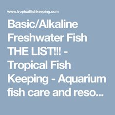 Basic/Alkaline Freshwater Fish THE LIST!!! - Tropical Fish Keeping - Aquarium fish care and resources