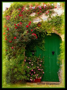 green door & floral accent,,, I want that with red or black door...