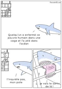 41 Ideas humor memes spanish hilarious for 2019 Funny Animal Comics, Animal Memes, Funny Animals, Talking Animals, Animal Humor, Meme Comics, Misunderstood Shark, Funny Images, Funny Pictures