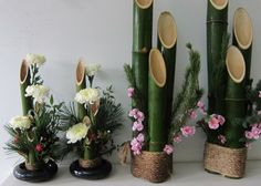 "green bamboo ""vases"" cool and free from Aunt K. kadomatsu qaud"