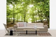living rooms with photo wall mural - Google Search