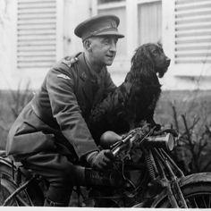 chien mascotte des soldats anglais 1916
