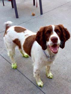 Jaxon after helping cutting the grass!!