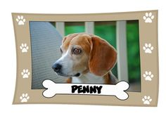 Personalized Pet Fleece Blanket on sale today w/ free shipping @Coupaw