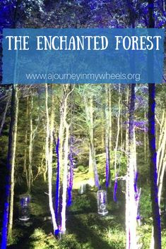 Accessible views on visiting The Enchanted Forest in Pitlochry, Scotland.