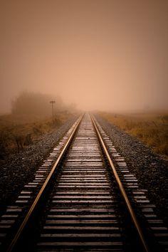 Rails V by ianmcgregor