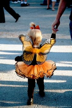 Butterfly costume for toddler