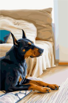 Happy Paintings, Paint By Number, Zayn Malik, Doberman, Hello Everyone, New Pictures, Digital Illustration, Artworks, Wallpapers