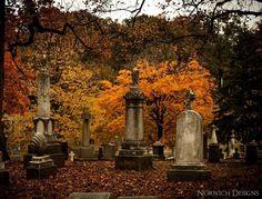 Autumn colors!