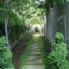#gardens, #paths, #pavers