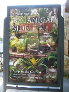 The NY Botanical Garden featuring my terrarium designs on Wild Medicine exhibit poster that opens May 17th!