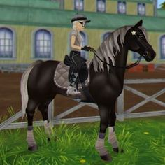 Star Stable Horses, Big Horses, Horses For Sale, Equine Quotes, Horse Games, Horse Videos, Stables, Cute Animals, Places