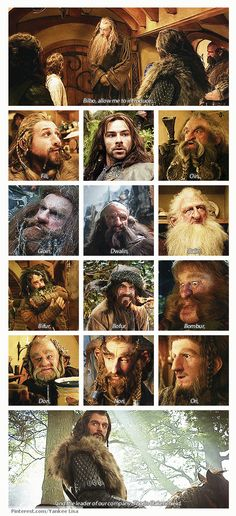 "I love these collages!  Fili, Kili, Oin, Gloin, Dwalin, Balin, Bifur, Bofur, Bombur, Dori, Nori, Ori and ""the leader of our company, Thorin Oakenshield."""