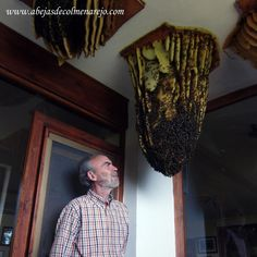(as much as I love bees, THIS would be disturbing.) Honeybee Home Invasions My Honey, Honey Bees, I Love Bees, Bee Friendly, Beneficial Insects, Save The Bees, Bee Happy, Busy Bee, Bees Knees
