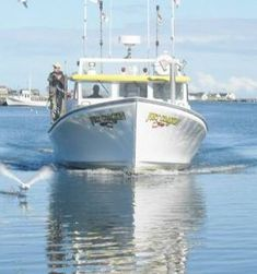 We are leaders in the Scenic and Sightseeing Transportation, Water business. We are perfect for all of your Miscellaneous Amusement and Recreation Industries needs. Fisherman's Wharf Restaurants, Mackerel Fish, Fishing Hole, Plenty Of Fish, Dawn And Dusk, Fish Finder, Types Of Fish, Salmon Fishing, Deep Sea Fishing