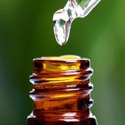 Essential Oils for Scars and a Scar Healing Serum Recipe - Holistic Health Herbalist Huile Tea Tree, Tea Tree Oil, Best Oils, Best Essential Oils, Terapia Gerson, Oregano Oil Benefits, Remedies For Menstrual Cramps, Oils For Scars, Natural Antibiotics