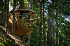 The Hemloft: Whistler, B. A secret pod-shaped tree house made from reclaimed materials hidden in the forest outside of Whistler, B. via 15 Summer Cabin Escapes Whistler, Modern Tree House, Tiny House Swoon, Cool Tree Houses, Natural Homes, Green Architecture, Canada, Cottage, Backyard