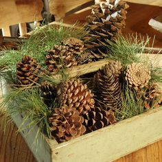 Rustic centerpiece: Take an old wooden box, small fruit crate, or basket and fill it with pinecones and some small pine branches. If you're lucky enough to have conifers in your backyard or local park, get the kids to gather your supplies and help arrange the centerpiece. Cones from both fir and pine trees work equally well and provide an assortment of sizes and shapes. With nicer boxes, an old cloth napkin can protect against sap and debris.