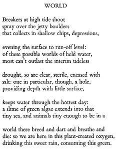 a r ammons essay on poetics