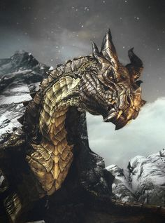 Paarthurnax the elder dragon, thank you Paarthurnax you helped me more than you know.