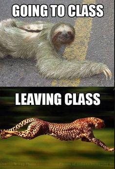 Hahaha so true....