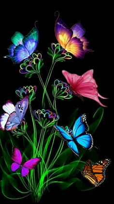 By Artist Unknown. Butterfly Wallpaper Iphone, Heart Wallpaper, Cellphone Wallpaper, Galaxy Wallpaper, Nature Wallpaper, Butterfly Background, Flower Background Wallpaper, Flower Backgrounds, Wallpaper Backgrounds