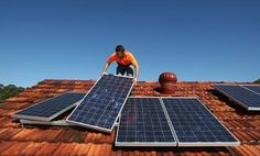 Clean energy bank 'seeks legal advice' after Coalition pulls plug on wind and solar projects   Environment   The Guardian