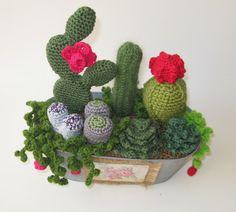 Crochet cactus in contenitore Questi piccoli e adorabile cactus e succulente troveranno loro posto ovunque nella vostra casa o il tuo ufficio per dare un tocco di verde. Essi sono il regalo perfetto in ogni occasione. Nessuno è simile, sono costituiti da filati di cotone e lana e fiberfill. POT è fatto di legno. Io uso il modello Planet giugno per ispirazione. sulla corda di succulenti pere. tutta la forma o sono forme libere o modelli di mio owe, il proprietario. Ogni progetto in completato…