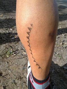 Slowtwitch Forums: Triathlon Forum: Ironman Triathlon tattoos