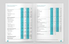 Maldivian Airline - Annual Report