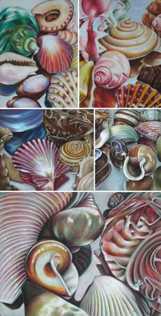 Still life drawing ideas for Art students Drawing shells: great art lesson by Elizabeth Jendek the Thai Chinese International School, Thailand Still Life Drawing, Still Life Art, High School Art Projects, Art School, Art Doodle, Drawing Projects, Drawing Ideas, Drawing Art, Drawing Topics