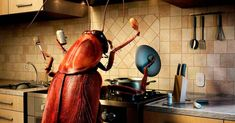 Roaches are filthy creatures that are responsible for many health problems. So you need to get rid of a roach infestation. There are many home remedies for roaches that are at your disposal. Learn these quick methods to get rid of cockroaches.