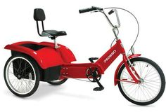 Beachcombing Electric Tricycle