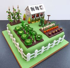 Gardeners Inspired Birthday Cake With Green House Vegetables houses vegetables Garden Birthday Cake, 90th Birthday Cakes, Bithday Cake, Vegetable Garden Cake, Allotment Cake, Susie Cakes, Dad Cake, Retirement Cakes, Garden Cakes