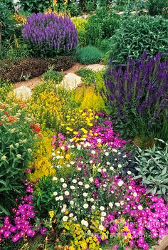 Designed and installed by Denver garden expert Tom Peace, the garden belonging to Ann Weckbaugh features drought tolerant perennials and tou...
