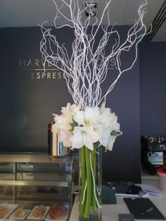 White amaryllis in tall tank vase with white twigs for Christmas - contemporary style