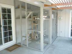 Enclosed Outdoor cat condo