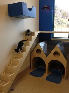 NEAS Community Cat Room Detail...love the way the stairs seem to come out of the window:) #cats #stairs #CatStairs #CatRoom #CatTree