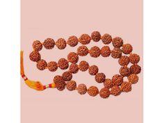 7 mukhi Rudraksha Kantha Mala
