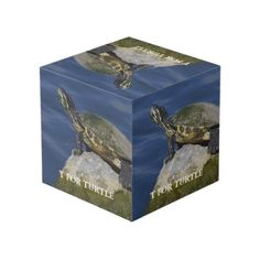 T For Turtle Cube Photo Cubes, Sentimental Gifts, Wedding Gifts, Turtle, Decorative Boxes, Amazing, Unique, Wedding Day Gifts, Turtles