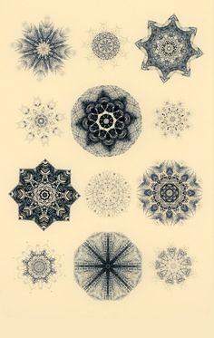 Les etoiles de mer abstract art print art by SarahGiannobile