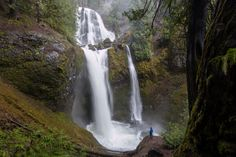 Falls Creek Falls.- 30 Must-See Waterfalls + Hikes in Washington