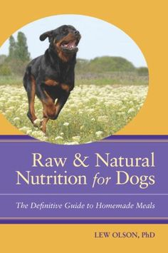 How raw feeding leads to better breeding why our dog eats raw how raw feeding leads to better breeding why our dog eats raw food pinterest best food suppliers natural dog food and dog food ideas forumfinder Choice Image