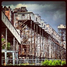 Farine Five Roses, Montreal. Montreal, Louvre, Stairs, Roses, Building, Places, Travel, Home Decor, Ladders