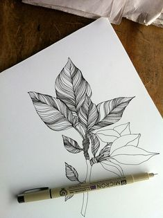 Drawing Doodles Sketches Doodle sketch, by Mia Nolting. Doodle Drawing, Doodle Art, Painting & Drawing, Doodle Sketch, Leaf Drawing, Nature Drawing, Plant Drawing, Zentangle Patterns, Zentangles