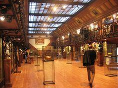 Cool Stuff in Paris | Musée d'Histoire de la Médecine; Museum of the History of Medicine in Paris, France