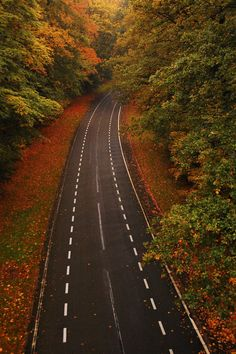 Artistic-realistic nature -  From above on 500px by Mendhak ☀Nikon...