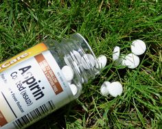An aspirin a day may do more than keep the doctor away. Did you know that using aspirin in the garden can have a beneficial effect on many of your plants? Salicylic acid is the active ingredient in aspirin and is derived from willow bark. Learn more here.